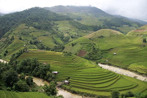 Vietnam Nord | 7 Jours
